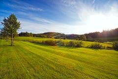 Campo verde en la puesta del sol Fotografía de archivo libre de regalías