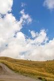 Campo verde en un día soleado Vista de un campo verde en el verano Imagenes de archivo