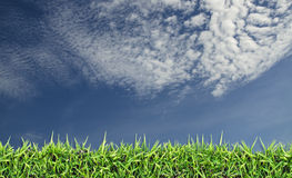 Campo verde, grama, céu azul e nuvens brancas Foto de Stock Royalty Free