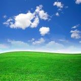 Campo verde hermoso foto de archivo libre de regalías
