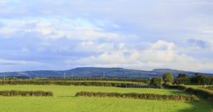 Campo verde hermoso en el fondo de Kerry Foto de archivo
