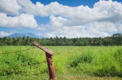 Campo verde nella provincia Fotografie Stock
