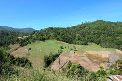Campo verde no vale Fotografia de Stock Royalty Free