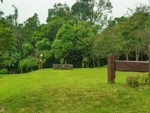 Campo verde para acampar com névoa no parque nacional de Ramkhamhaeng da montanha de Khao Luang no dia chuvoso imagem de stock royalty free