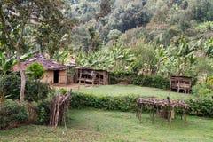 Campo verde perto de Mount Meru imagem de stock