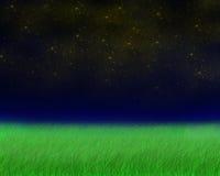 Campo verde por la tarde Ilustración del Vector
