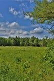 Campo verde situato in Childwold, New York, Stati Uniti immagini stock libere da diritti