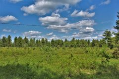 Campo verde situato in Childwold, New York, Stati Uniti fotografie stock libere da diritti