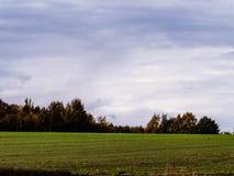 Campo verde un giorno di autunno La Polonia del Nord immagine stock libera da diritti