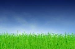 Campo verde un giorno nuvoloso Fotografia Stock