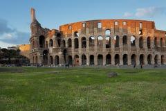 Campo verde vicino al Colosseum Fotografie Stock Libere da Diritti