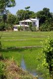 Campo verde y casa blanca Imagen de archivo libre de regalías