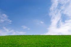 Campo verde y cielo azul Imagen de archivo