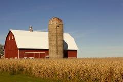 Campo vermelho do celeiro, do silo e de milho Fotos de Stock Royalty Free