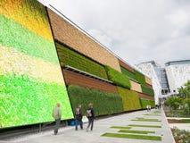 Campo vertical en la EXPO, la exposición del mundo Fotos de archivo libres de regalías