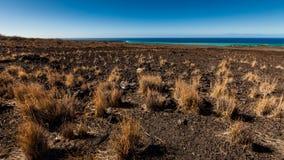Campo volcánico Imágenes de archivo libres de regalías