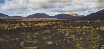 Campo volcánico brillante Fotos de archivo libres de regalías