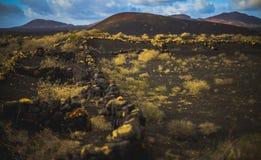 Campo vulcânico brilhante imagens de stock