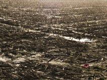 Campo WW1 delle Fiandre Fotografie Stock