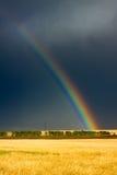 Campo y arco iris de trigo en el cielo nublado foto de archivo libre de regalías