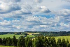Campo y bosque en un día de verano soleado Foto de archivo libre de regalías
