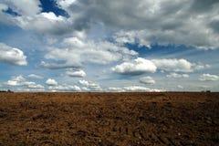 Campo y cielo Fotos de archivo libres de regalías