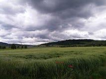 Campo y cielo Fotos de archivo