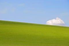 Campo y cielo de hierba Imágenes de archivo libres de regalías