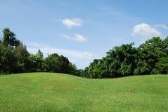 Campo y cielo de hierba Imagenes de archivo