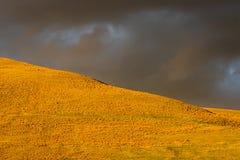 Campo y cielo tempestuosos imágenes de archivo libres de regalías