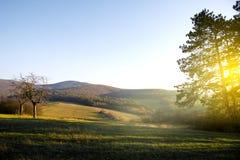 Campo y cielo verdes con resplandor de la mañana Montaña en la parte posterior fotografía de archivo libre de regalías