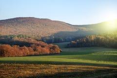 Campo y cielo verdes con resplandor de la mañana Montaña en la parte posterior fotografía de archivo