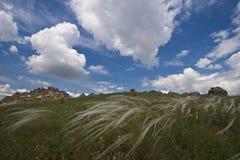 Campo y cloudscape Foto de archivo libre de regalías