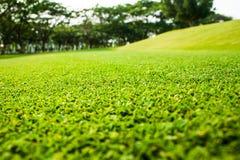 Campo y colina verdes Fotos de archivo libres de regalías