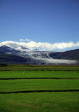 Campo y glaciar verdes fotografía de archivo
