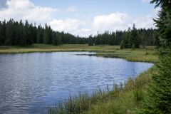 Campo y lago Fotografía de archivo