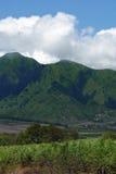 Campo y montaña Fotografía de archivo