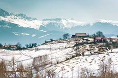 Campo y montañas Foto de archivo