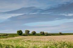 Campo y nubes Imágenes de archivo libres de regalías