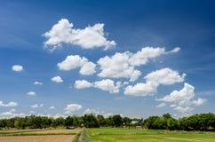 Campo y nubes del arroz Imagen de archivo
