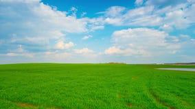 Campo y nubes verdes, time lapse panorámico almacen de video