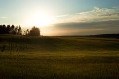 Campo y puesta del sol verdes Composición clásica Imágenes de archivo libres de regalías