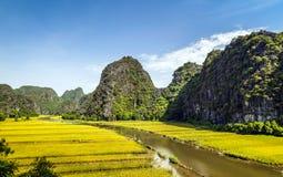 Campo y río del arroz en TamCoc, NinhBinh, Vietnam Foto de archivo