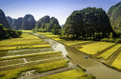 Campo y río del arroz en TamCoc, NinhBinh, Vietnam Imagenes de archivo