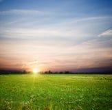 Campo y salida del sol verdes Fotografía de archivo