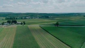 Campo y tierras de labrantío de Amish según lo visto por el abejón