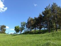 Campo y un cielo claro Foto de archivo libre de regalías