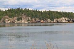 Campobello海岛海岸线岩石结构  免版税图库摄影