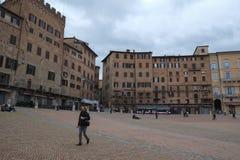 campodelitaly piazza siena arkivbild