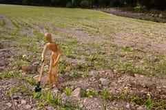 Camponês em um campo com pá Foto de Stock